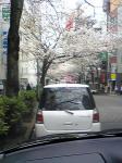 070328sibuya.jpg