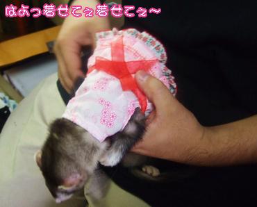 momo_RakuchinKichaku.jpg