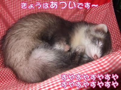 momo_bakusui.jpg