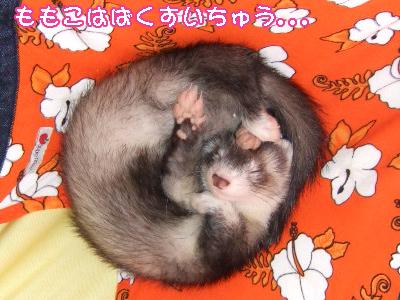momo_bakusui00.jpg
