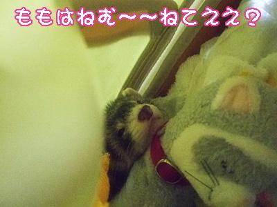 momo_byouin3.jpg