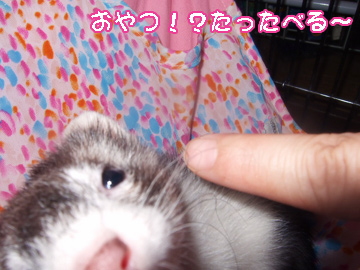 momo_eekimochi5.jpg