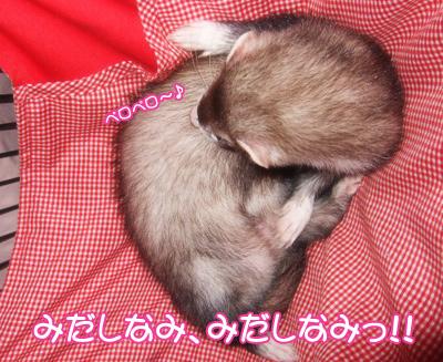 momo_furoagari01.jpg
