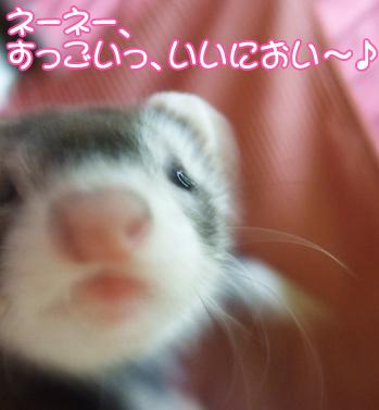momo_furoagari03.jpg