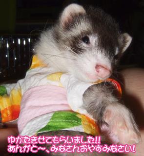 momo_yukata01.jpg