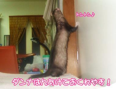 momoko907-2.jpg