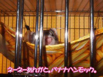 momoko_banana01.jpg