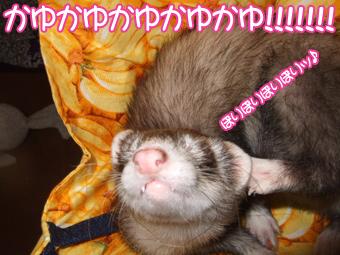 momoko_banana04.jpg