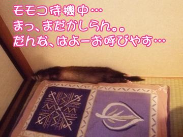 momoyakko-01.jpg