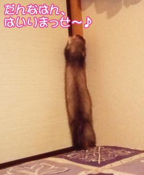 momoyakko-03.jpg