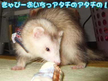 teruru_823-1.jpg