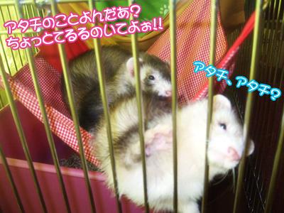 twogirls01.jpg