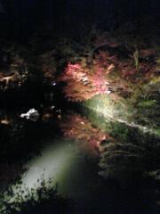 06/11/24 永観堂ライトアップ2
