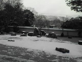 日本の冬!