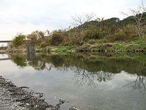 多摩川キャスティング練習場