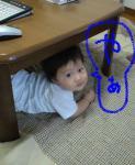 hide457.jpg