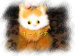 猫のキーリング