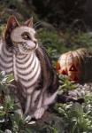 ハロウィン猫