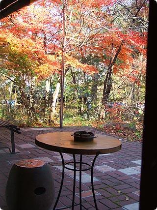 食堂の窓からの景色