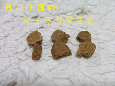 20070803215018.jpg