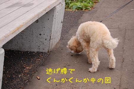 20070918153201.jpg