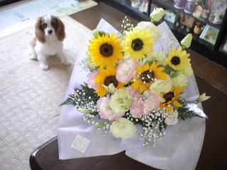 元気へのお花