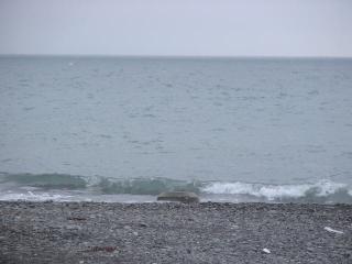 この浜辺で..