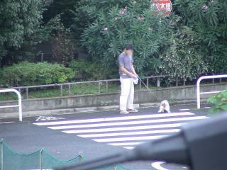 パパと朝のお散歩へ~
