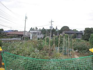 おらが村の貸し農園