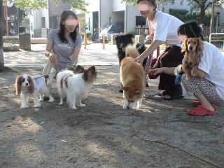 井戸端会議中~