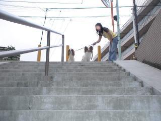 長~い階段だぞー
