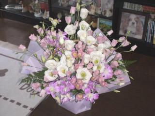 今月のお花..