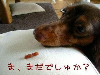 Image670.jpg