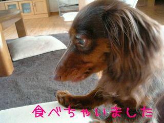 Image671.jpg