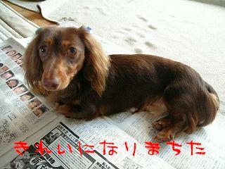 Image744.jpg