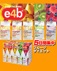 e4b(イー・フォー・ビー)