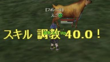 1011_!.jpg