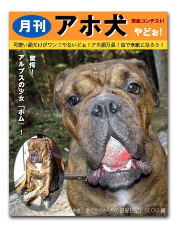 月刊アホ犬