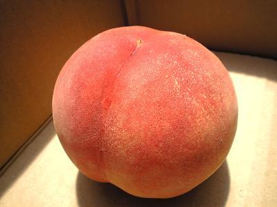 実家の桃です
