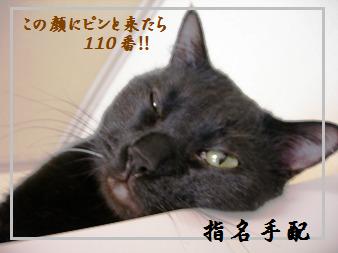 12-01blog.png