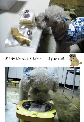 20070507-4.png