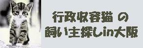 link-gyosei.jpg