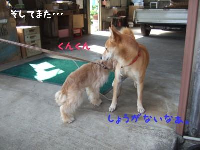 けんちゃんと(昨年)4