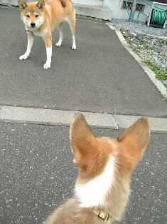 Rin070912-1.jpg