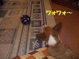 Rin071002-6.jpg
