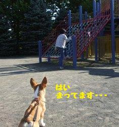 Rin071006-4.jpg