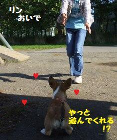 Rin071006-5.jpg