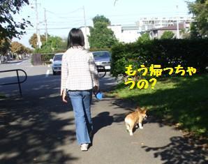 Rin071006-9.jpg