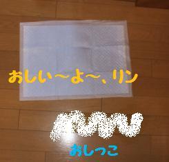 Rin071010-3.jpg