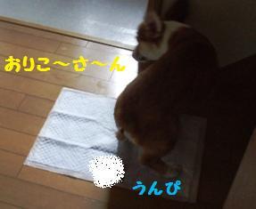 Rin071010-4.jpg